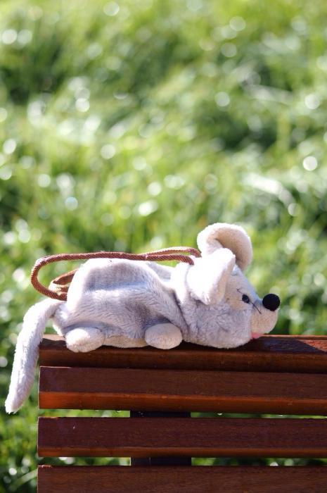 Bolso ratón
